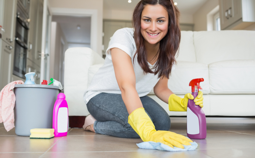 domestic home cleaning services